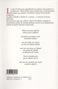 Bériou Jean-Yves – L'Emportement des choses